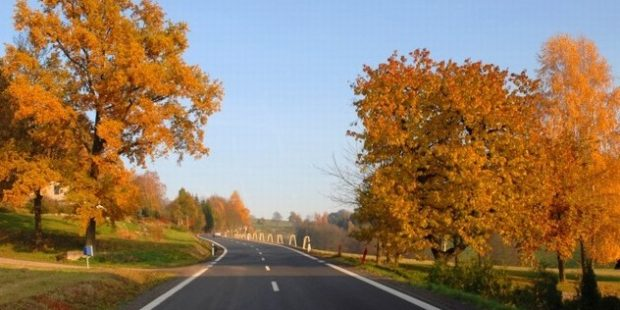 GLOSA: Silnice v předvolebním boji