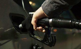 KOMENTÁŘ: Slabá koruna může za drahotu na čerpacích stanicích